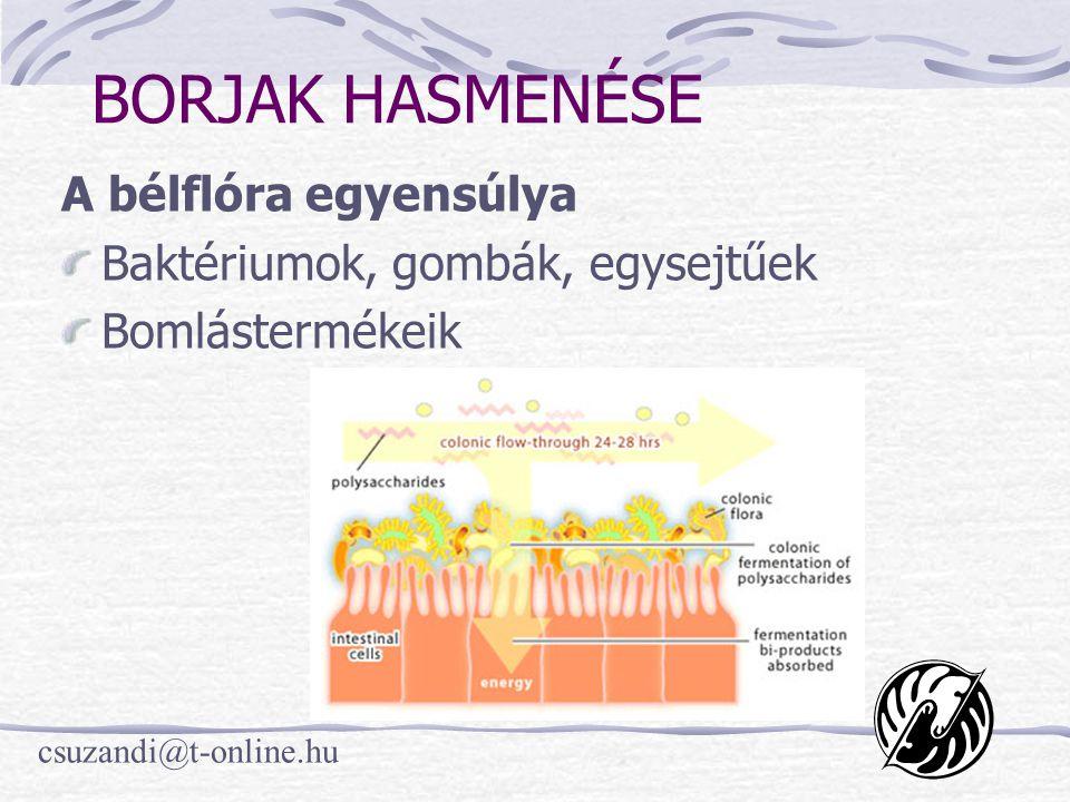 csuzandi@t-online.hu BORJAK HASMENÉSE A bélflóra egyensúlya Baktériumok, gombák, egysejtűek Bomlástermékeik