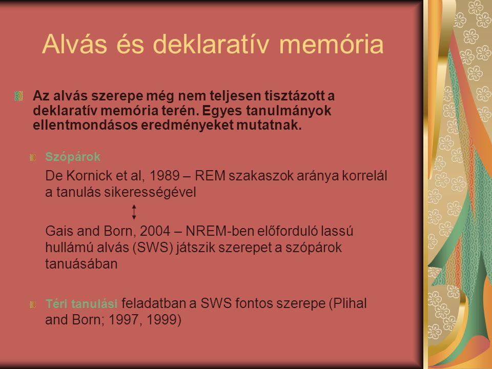 Szópárok De Kornick et al, 1989 – REM szakaszok aránya korrelál a tanulás sikerességével Gais and Born, 2004 – NREM-ben előforduló lassú hullámú alvás (SWS) játszik szerepet a szópárok tanuásában Téri tanulási feladatban a SWS fontos szerepe (Plihal and Born; 1997, 1999) Alvás és deklaratív memória Az alvás szerepe még nem teljesen tisztázott a deklaratív memória terén.