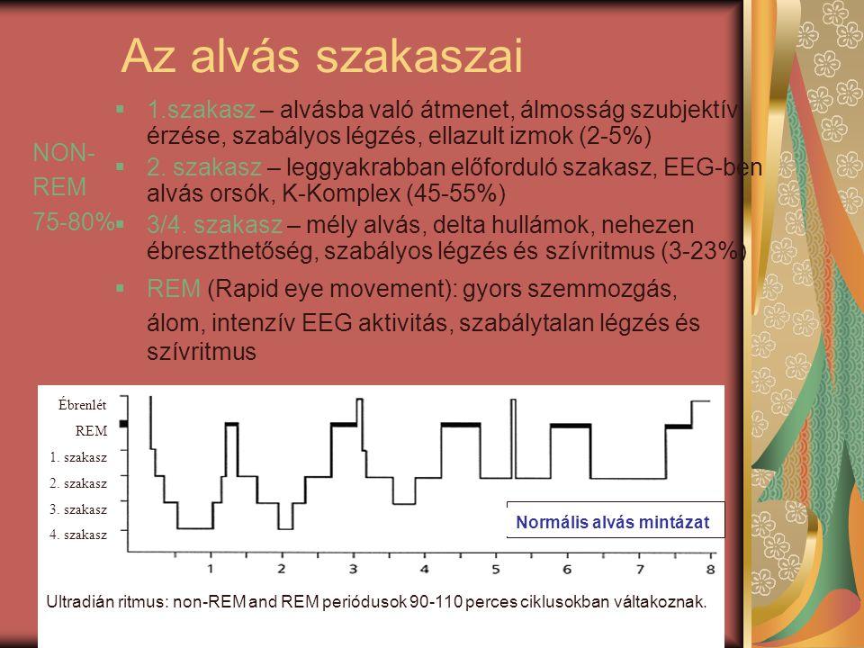 Zavart, töredezett alvás mintázat Ébrenlét REM 1. szakasz 2. szakasz 3. szakasz 4. szakasz Normális alvás mintázat óra Ébrenlét REM 1. szakasz 2. szak
