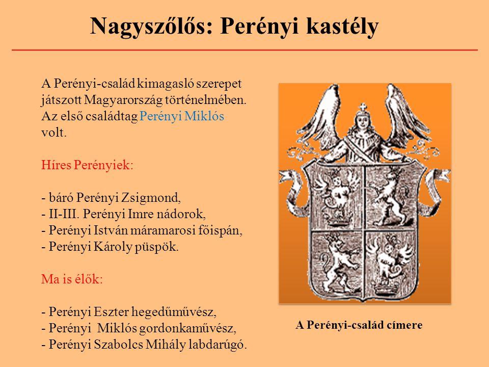 A Perényi-család címere A Perényi-család kimagasló szerepet játszott Magyarország történelmében. Az első családtag Perényi Miklós volt. Híres Perényie