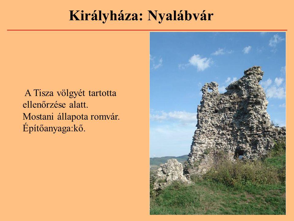 A Tisza völgyét tartotta ellenőrzése alatt. Mostani állapota romvár. Építőanyaga:kő.