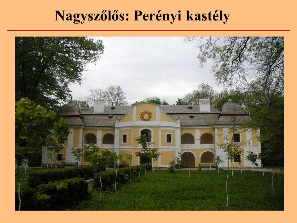 A Perényi-család címere A Perényi-család kimagasló szerepet játszott Magyarország történelmében.