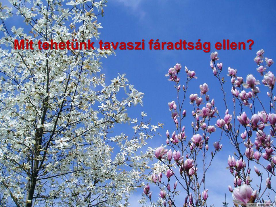 Mit tehetünk tavaszi fáradtság ellen?