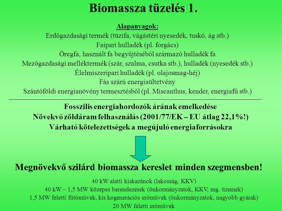 Biomassza tüzelés 1. Fosszilis energiahordozók árának emelkedése Növekvő zöldáram felhasználás (2001/77/EK – EU átlag 22,1%!) Várható kötelezettségek