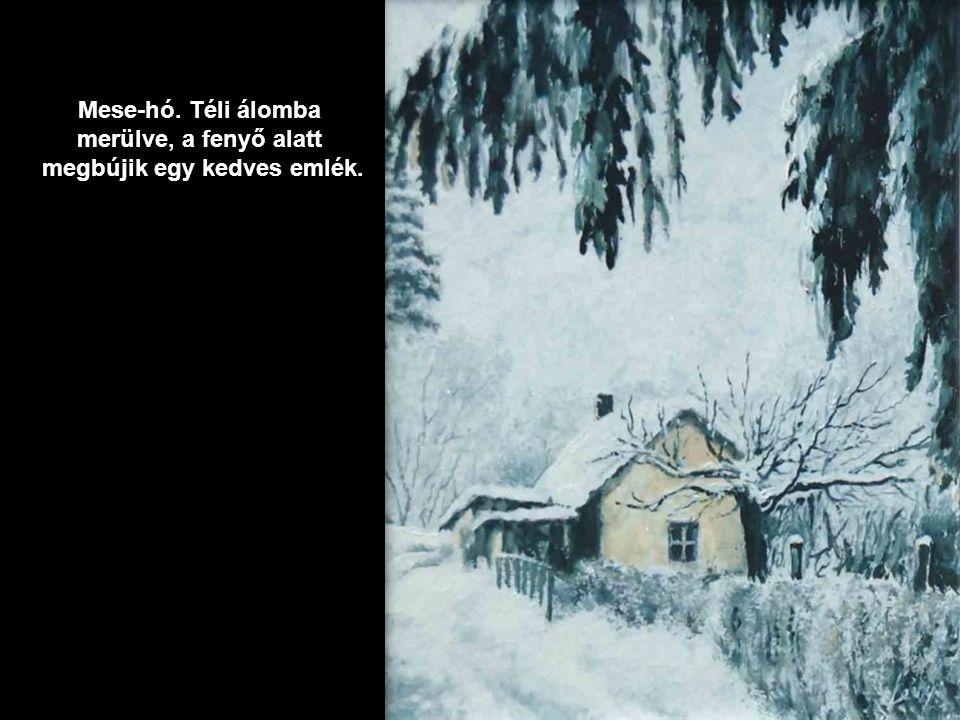 Házikó és az öreg almafa…, a fenyő is hópaplan alatt.