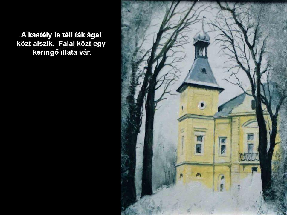 Mese-hó. Téli álomba merülve, a fenyő alatt megbújik egy kedves emlék.