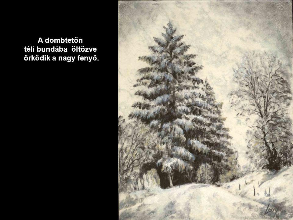 A dombtetőn téli bundába öltözve őrködik a nagy fenyő.