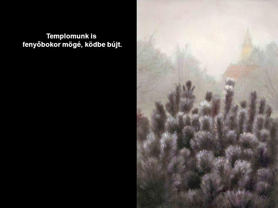 Templomunk is fenyőbokor mögé, ködbe bújt.