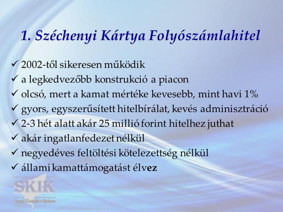 1. Széchenyi Kártya Folyószámlahitel  2002-től sikeresen működik  a legkedvezőbb konstrukció a piacon  olcsó, mert a kamat mértéke kevesebb, mint h