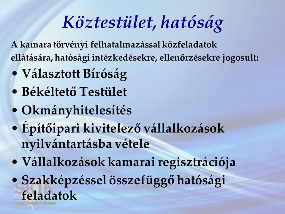 """Kamara, mint információs központ •Rendezvények, tanfolyamok, tájékoztatók, tréningek szervezése •Pályázatfigyelés •Tájékoztatás hitellehetőségekről •Adóügyi-, jogi-, pénzügyi-, EU-, iparjogvédelmi--, innovációs-, üzleti tevékenységre vonatkozó tanácsadás •""""Somogyi Gazdaság c."""