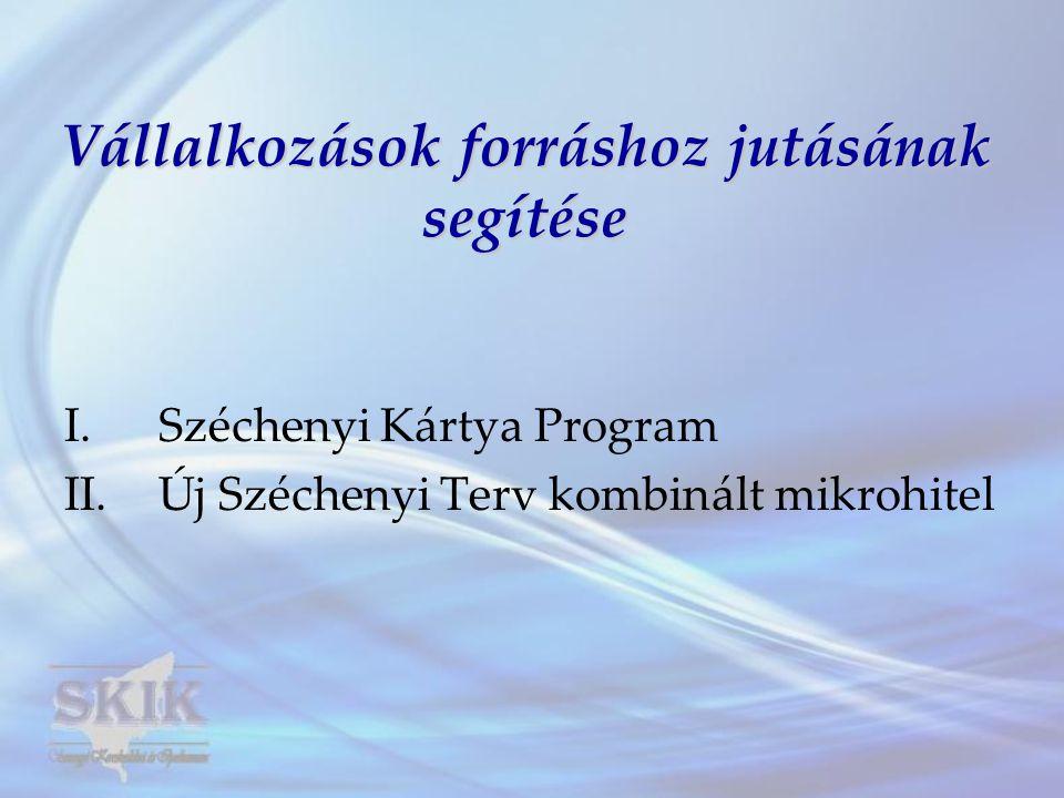 I.SZÉCHENYI KÁRTYA PROGRAM 1.Széchenyi Kártya Folyószámlahitel (2002.