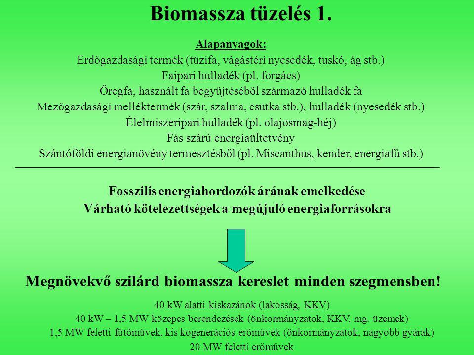 Biomassza tüzelés 1. Fosszilis energiahordozók árának emelkedése Várható kötelezettségek a megújuló energiaforrásokra Megnövekvő szilárd biomassza ker