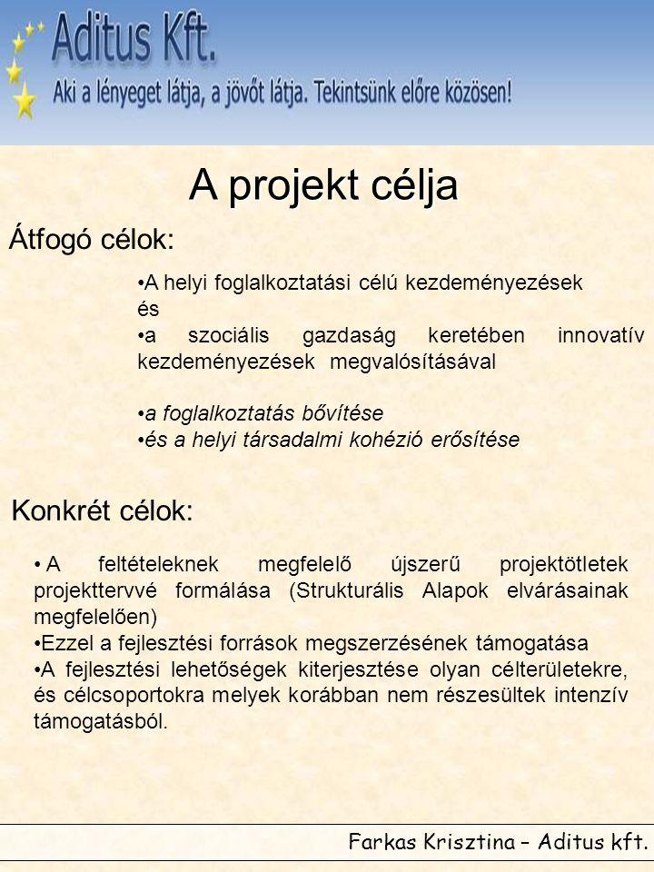 Farkas Krisztina – Aditus kft. A projekt célja Átfogó célok: •A helyi foglalkoztatási célú kezdeményezések és •a szociális gazdaság keretében innovatí