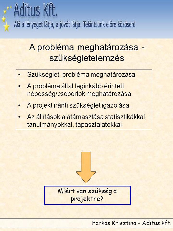 Farkas Krisztina – Aditus kft. A probléma meghatározása - szükségletelemzés •Szükséglet, probléma meghatározása •A probléma által leginkább érintett n