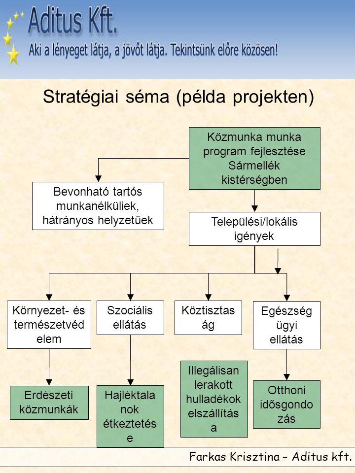 Farkas Krisztina – Aditus kft. Stratégiai séma (példa projekten) Közmunka munka program fejlesztése Sármellék kistérségben Települési/lokális igények