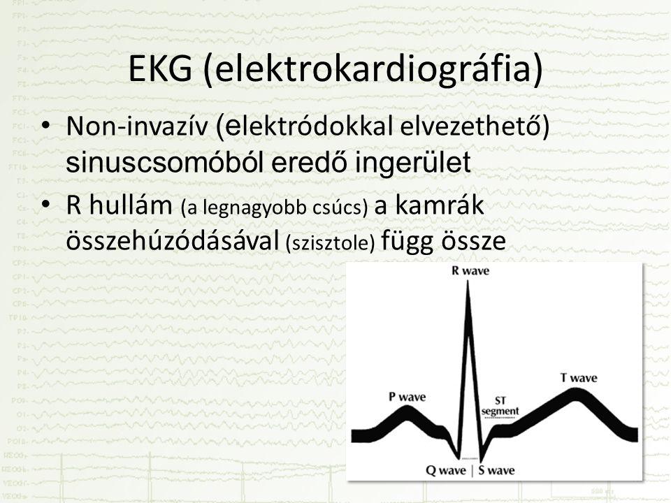 EKG (elektrokardiográfia) • Non-invazív (e lektródokkal elvezethető) sinuscsomóból eredő ingerület • R hullám (a legnagyobb csúcs) a kamrák összehúzódásával (szisztole) függ össze