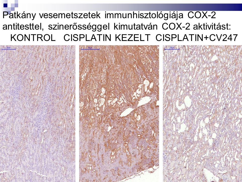 cisplatin alone cisplatin & CV247