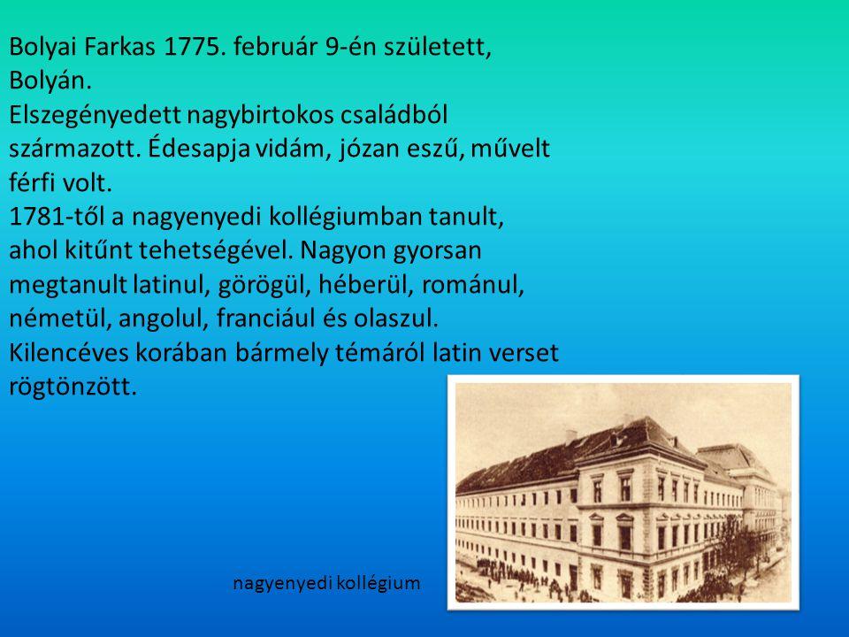 Bolyai Farkas 1775. február 9-én született, Bolyán. Elszegényedett nagybirtokos családból származott. Édesapja vidám, józan eszű, művelt férfi volt. 1