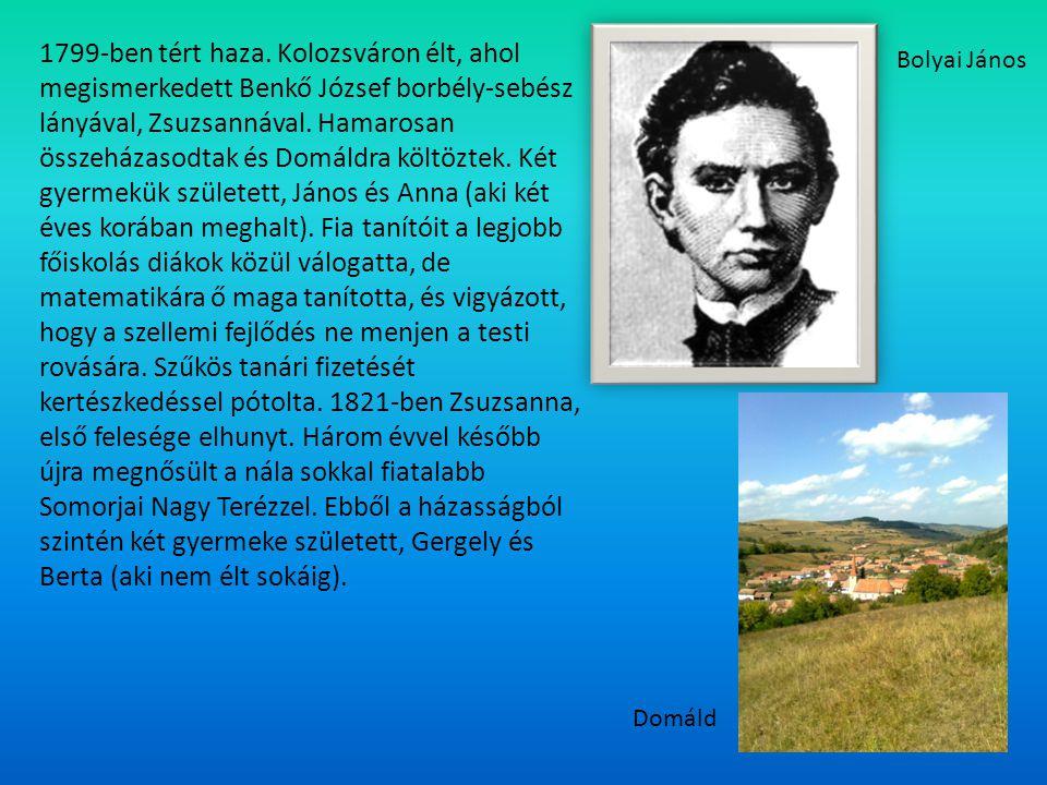 1851-ben ment nyugdíjba.1854-ben két tragédia is elérte : meghalt unokája és barátja, Gauss.