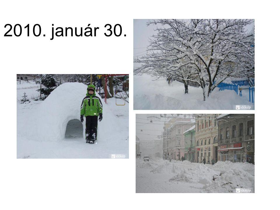 2010. január 30.