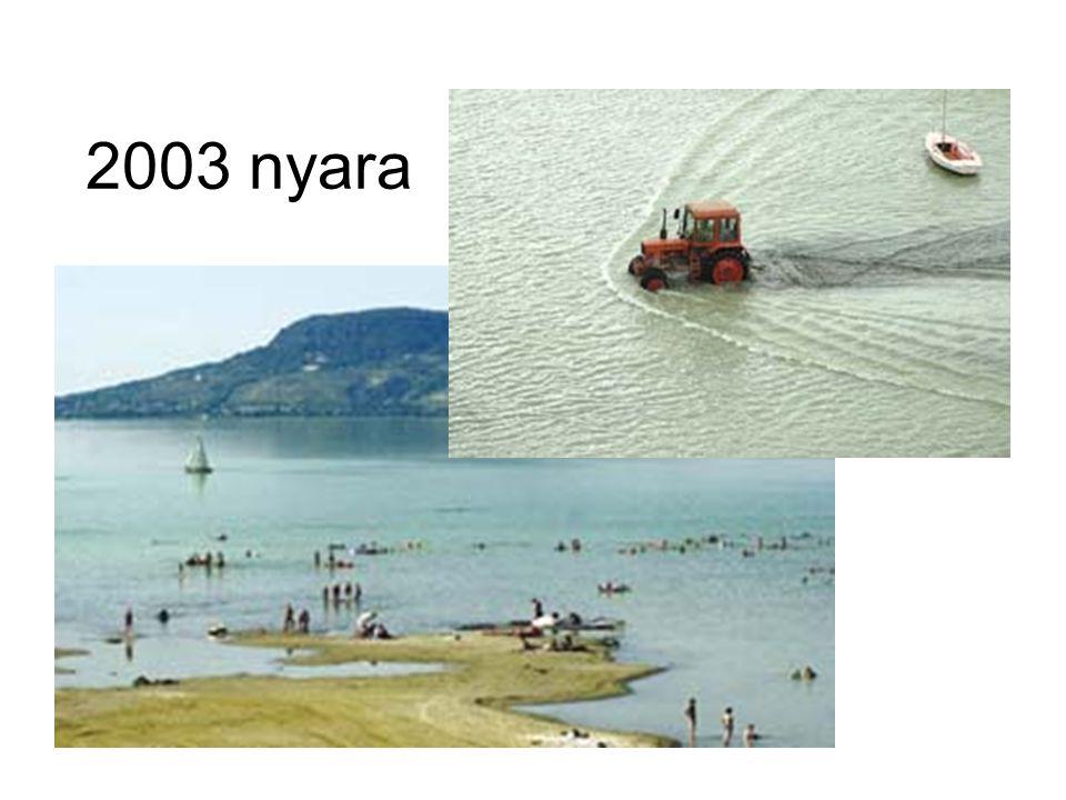 2003 nyara