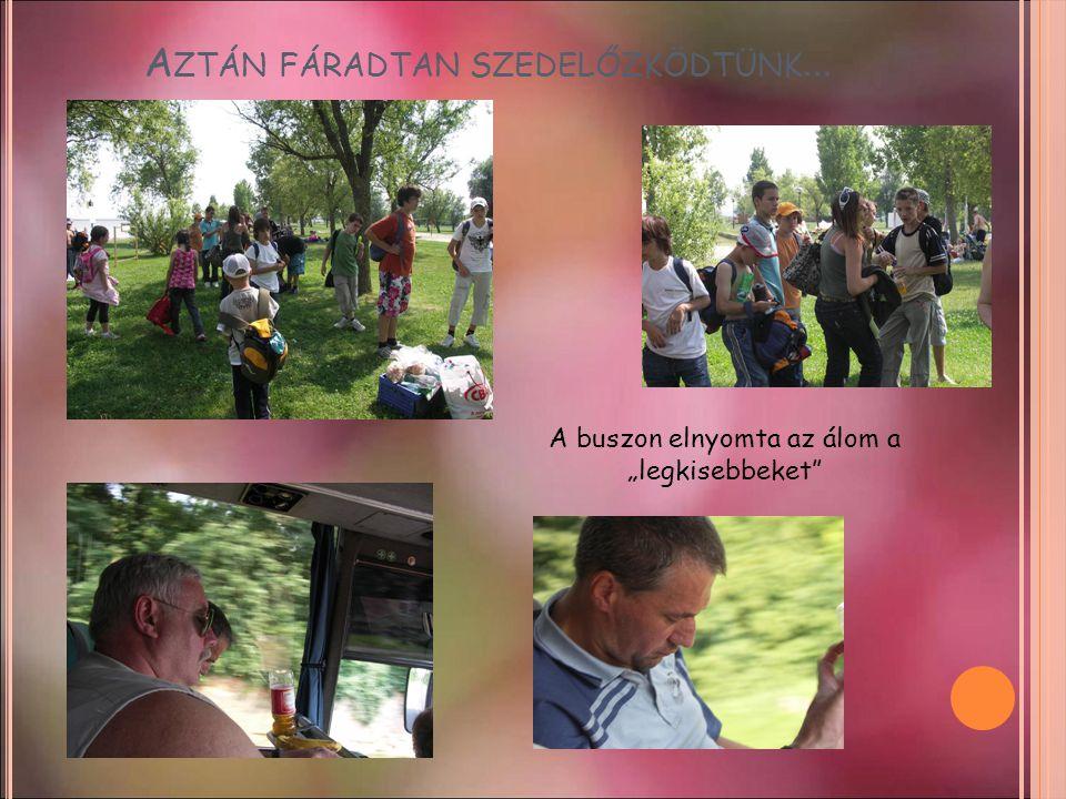 """A ZTÁN FÁRADTAN SZEDELŐZKÖDTÜNK … A buszon elnyomta az álom a """"legkisebbeket"""