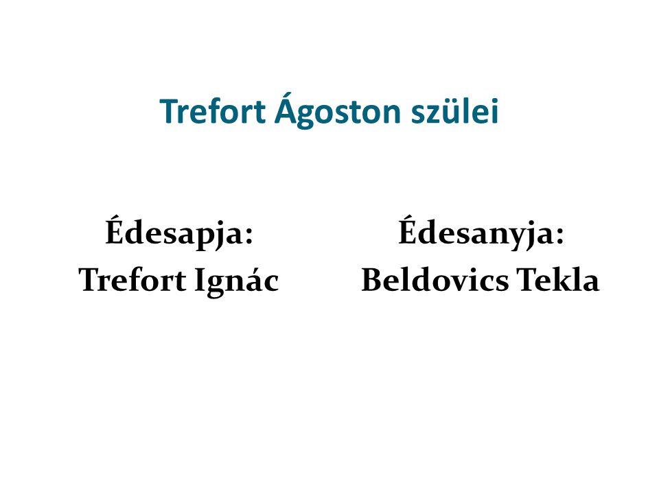 Trefort Ágoston testvérei Antal István (1820 - 1820) (1825 -? )