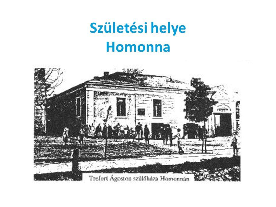 Születési helye Homonna