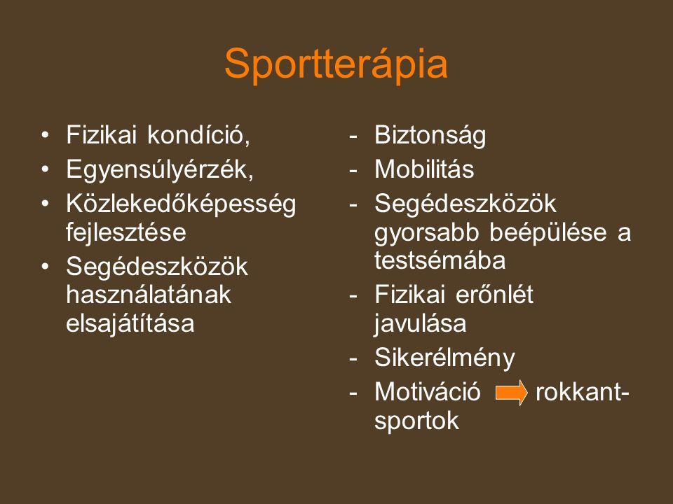A fogyatékossággal élők sport általi esélyegyenlősége •Magyarországon a fogyatékosok rehabilitációja a sport útján – tudatosan, szervezetten nem létezik.