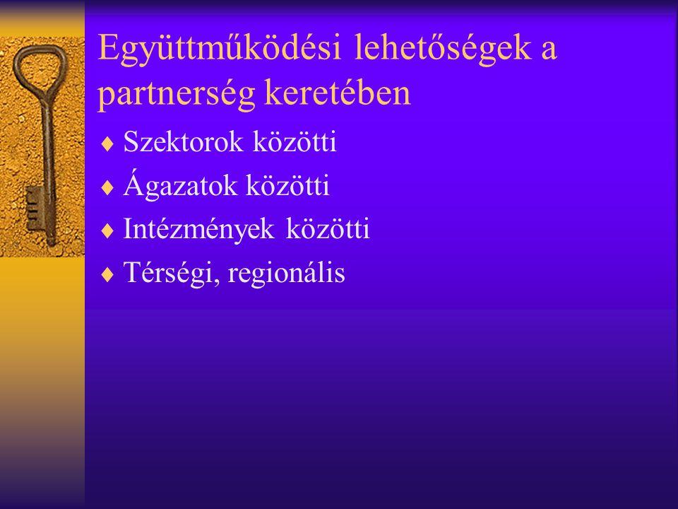 Együttműködési lehetőségek a partnerség keretében  Szektorok közötti  Ágazatok közötti  Intézmények közötti  Térségi, regionális