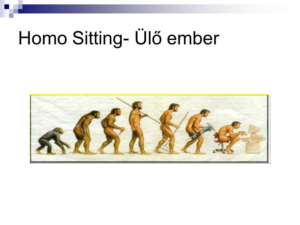 Homo Sitting- Ülő ember