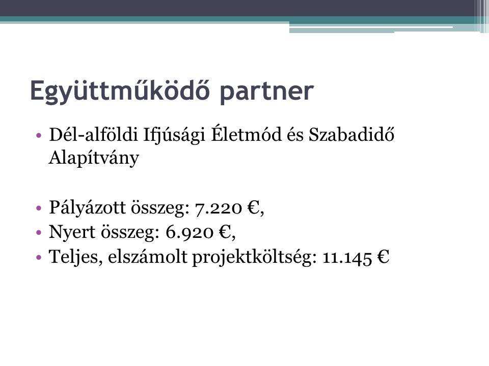 Együttműködő partner •Dél-alföldi Ifjúsági Életmód és Szabadidő Alapítvány •Pályázott összeg: 7.220 €, •Nyert összeg: 6.920 €, •Teljes, elszámolt proj