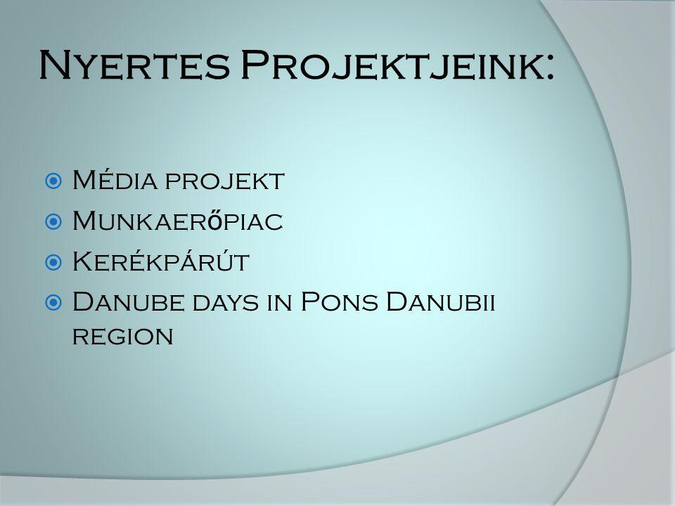 Nyertes Projektjeink:  Média projekt  Munkaer ő piac  Kerékpárút  Danube days in Pons Danubii region
