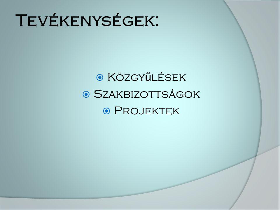 Tevékenységek:  Közgy ű lések  Szakbizottságok  Projektek