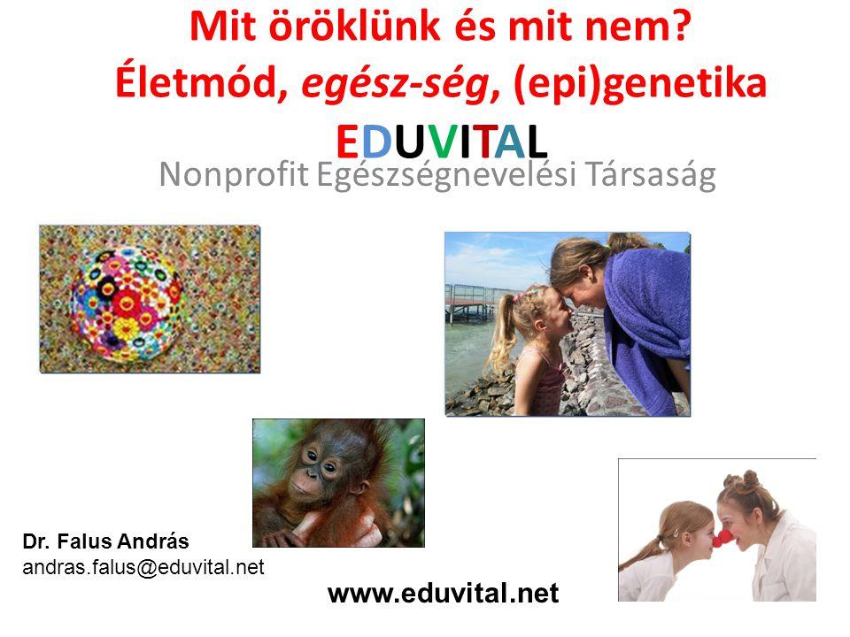 Mit öröklünk és mit nem? Életmód, egész-ség, (epi)genetika EDUVITAL Nonprofit Egészségnevelési Társaság Dr. Falus András andras.falus@eduvital.net www