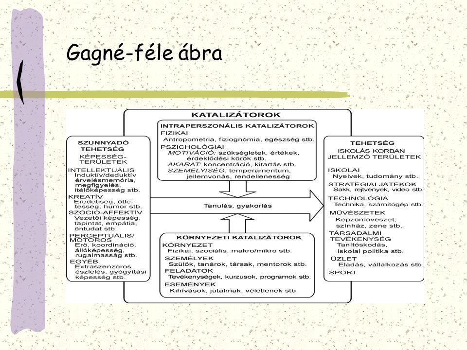 A tehetséggondozó programok felépítésének struktúrája,szakmai követelmények 1.