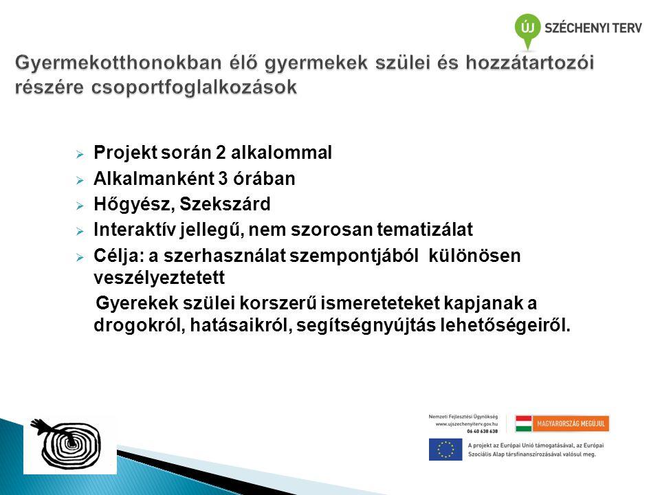  Projekt során 2 alkalommal  Alkalmanként 3 órában  Hőgyész, Szekszárd  Interaktív jellegű, nem szorosan tematizálat  Célja: a szerhasználat szem