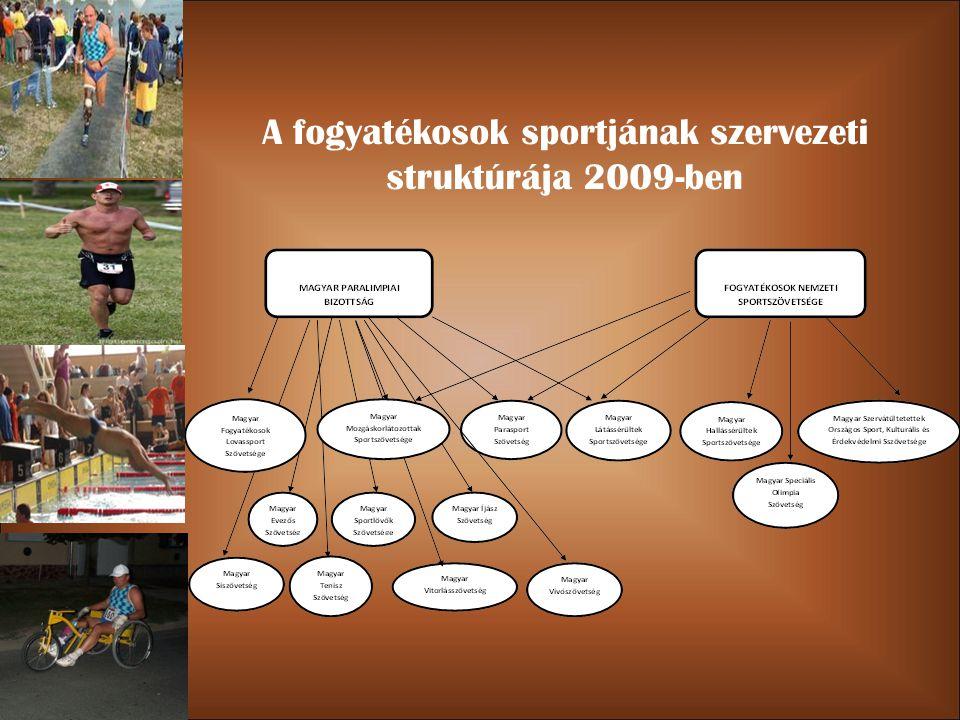 A fogyatékosok sportjának szervezeti struktúrája 2009-ben