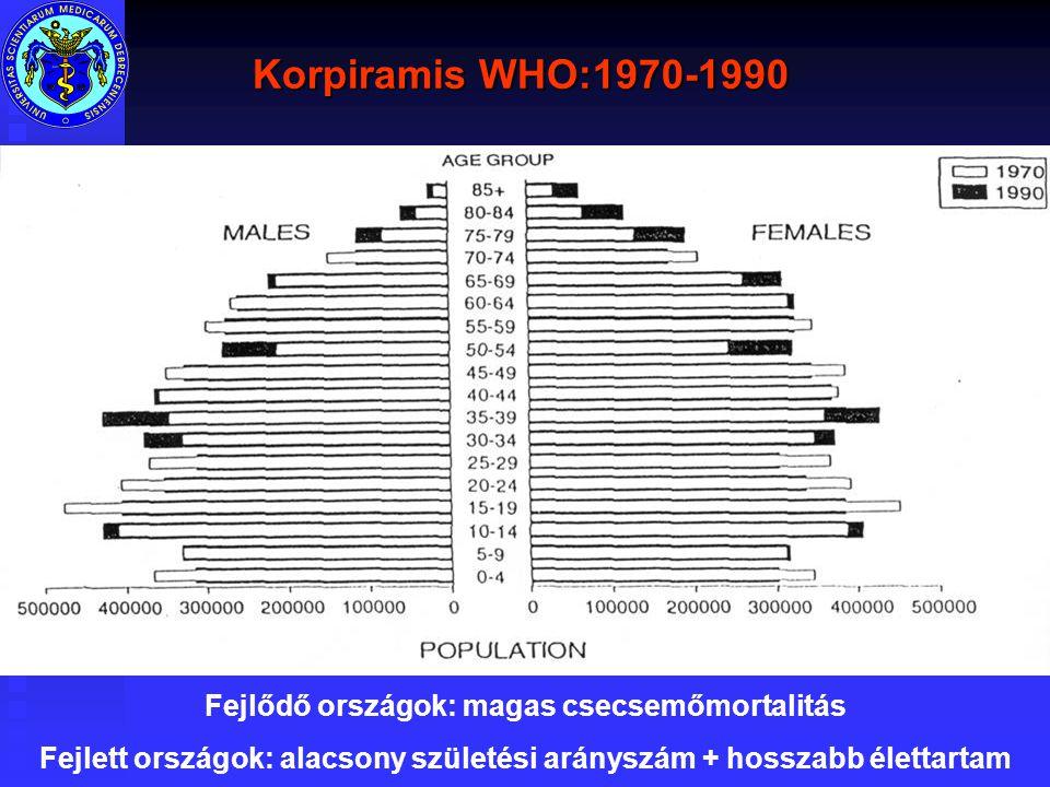 Korpiramis WHO:1970-1990 Fejlődő országok: magas csecsemőmortalitás Fejlett országok: alacsony születési arányszám + hosszabb élettartam