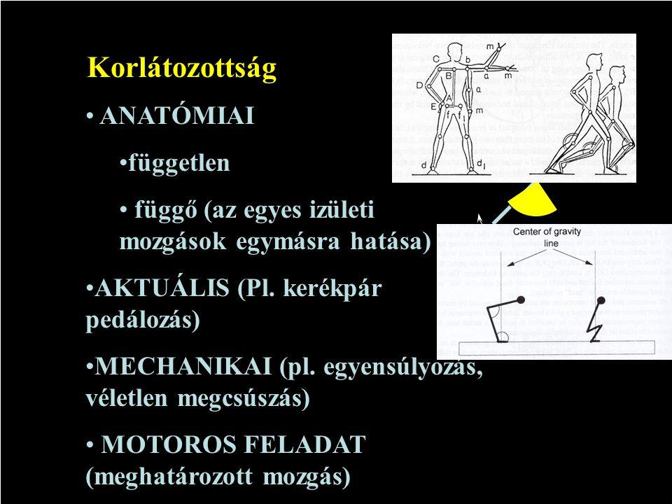 3D: SZF = 6N - K 2D SZF = 3N - K N = testszegmensek száma, K = a korlátozottság szám Izületi mozgás szabadságfok (SZF)