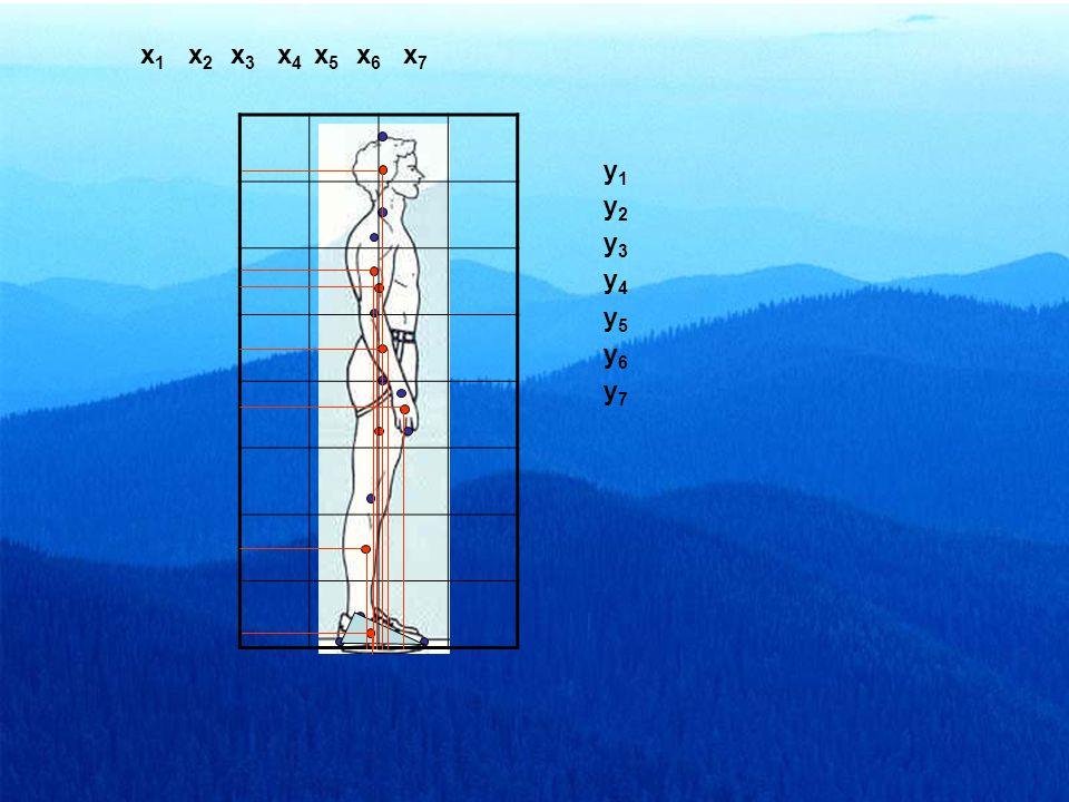 P1P1 P2P2 P3P3 P4P4 P5P5 P6P6 P7P7 P8P8 (P 1 – P 2 )  0.45 (P 2 – P 5 )  0.61 (P 3 – P 4 )  0.43 (P 4 – P 6 )  0.43 (P 5 – P 7 )  0.43 (P 7 – P 8