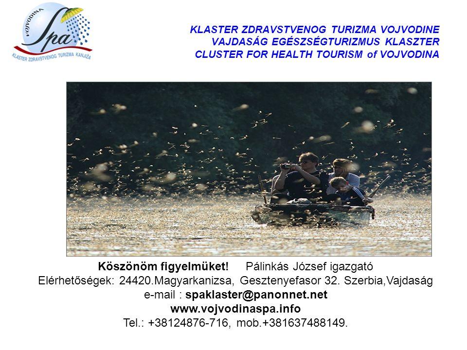 KLASTER ZDRAVSTVENOG TURIZMA VOJVODINE VAJDASÁG EGÉSZSÉGTURIZMUS KLASZTER CLUSTER FOR HEALTH TOURISM of VOJVODINA Köszönöm figyelmüket! Pálinkás Józse