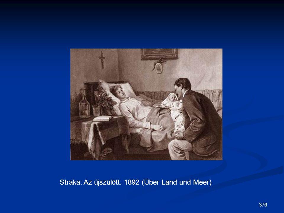 376 Straka: Az újszülött. 1892 (Über Land und Meer)
