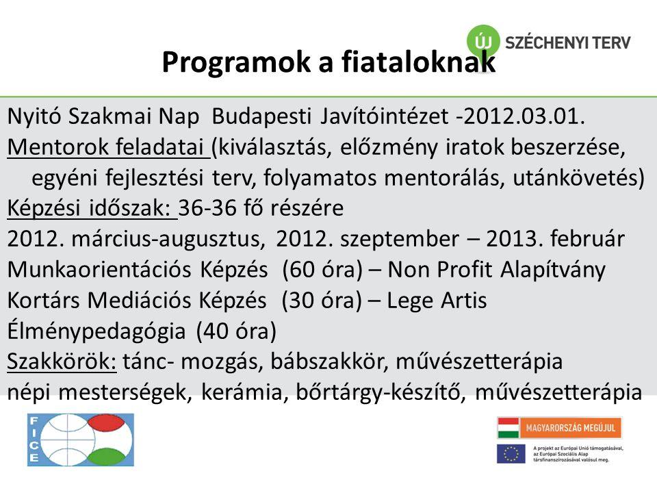 Programok a fiataloknak Nyitó Szakmai Nap Budapesti Javítóintézet -2012.03.01. Mentorok feladatai (kiválasztás, előzmény iratok beszerzése, egyéni fej