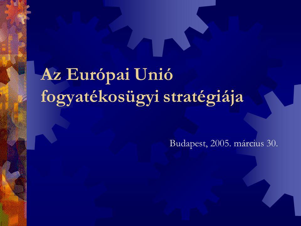 Az Európai Unió fogyatékosügyi stratégiája Budapest, 2005. március 30.