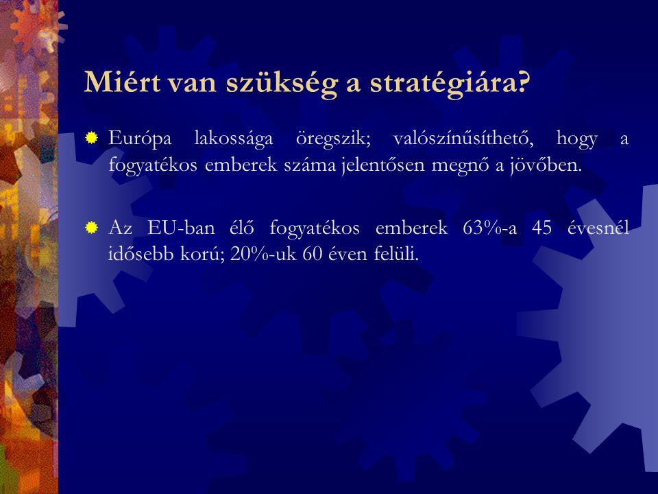 Fontosabb dokumentumok  Az Európai Unió Alapvető Emberi Jogi Chartája (26.