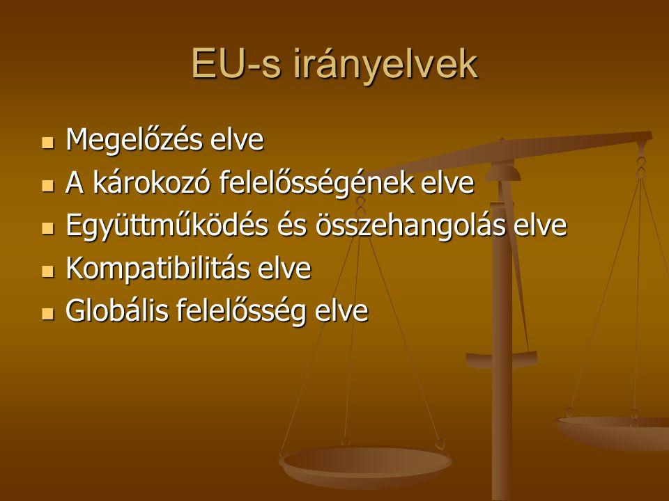 EU-s irányelvek  Megelőzés elve  A károkozó felelősségének elve  Együttműködés és összehangolás elve  Kompatibilitás elve  Globális felelősség el