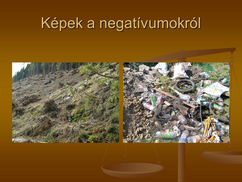 Képek a negatívumokról