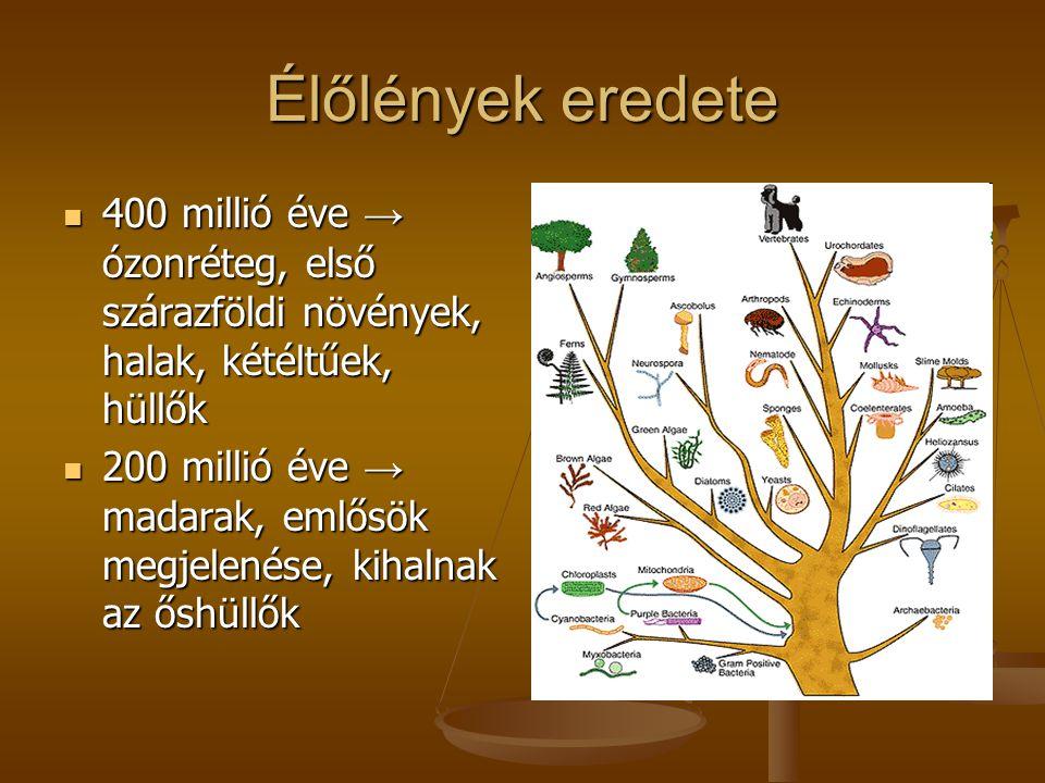 Élőlények eredete  400 millió éve → ózonréteg, első szárazföldi növények, halak, kétéltűek, hüllők  200 millió éve → madarak, emlősök megjelenése, k