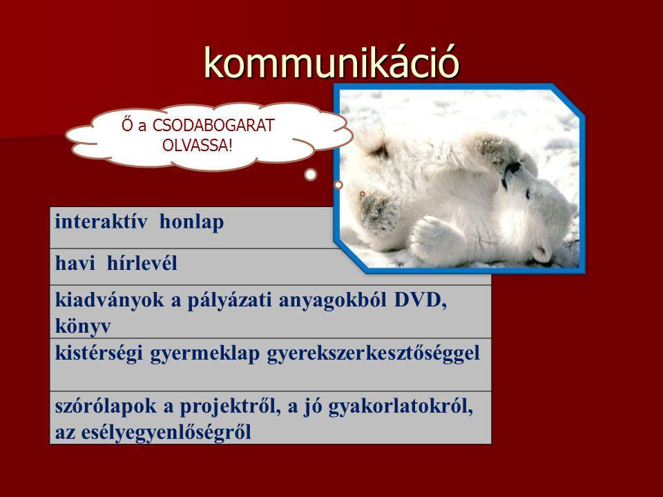 kommunikáció interaktív honlap havi hírlevél kiadványok a pályázati anyagokból DVD, könyv kistérségi gyermeklap gyerekszerkesztőséggel szórólapok a pr